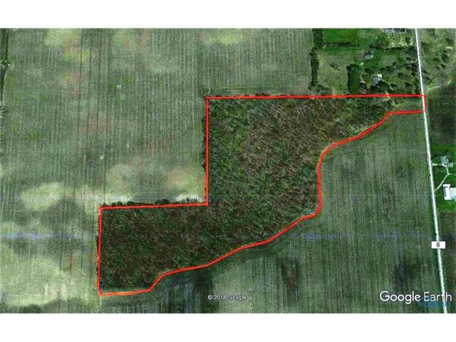 0 Co Rd 6, Delta, OH 43515 (MLS #6008236) :: Key Realty