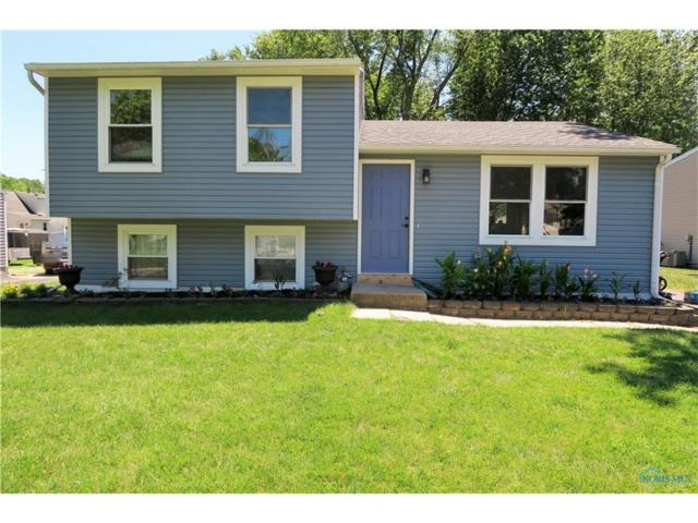 11349 Wyndham, Whitehouse, OH 43571 (MLS #6010413) :: RE/MAX Masters