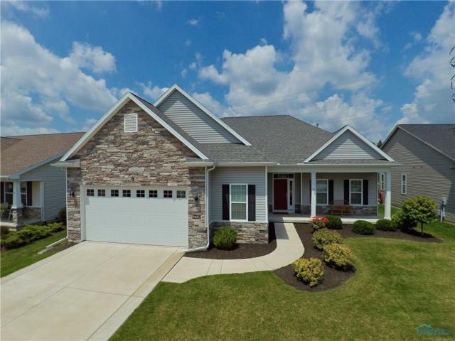 9882 Studer, Whitehouse, OH 43571 (MLS #6010924) :: RE/MAX Masters