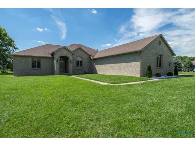 6667 County Road 2, Swanton, OH 43558 (MLS #6011238) :: Key Realty