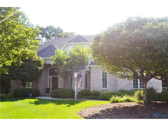 3983 Wrens Nest, Maumee, OH 43537 (MLS #6011310) :: Key Realty