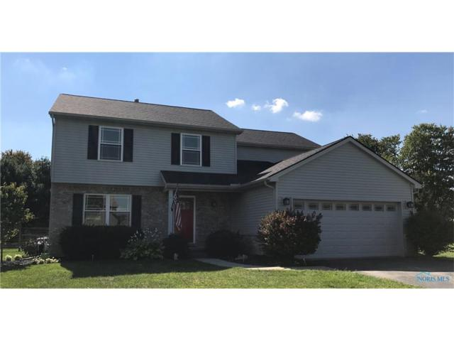 10955 Wildflower, Whitehouse, OH 43571 (MLS #6015514) :: Key Realty