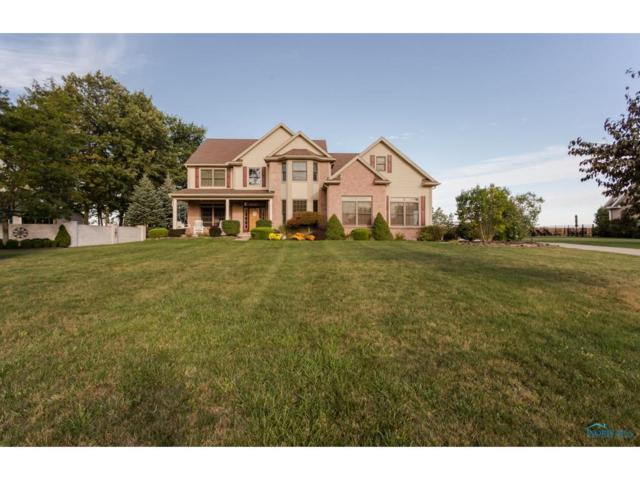 6705 E Blue Prairie, Whitehouse, OH 43571 (MLS #6015829) :: Key Realty