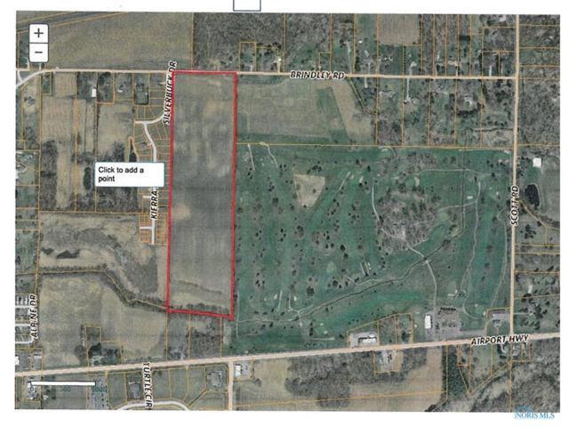 13955 Brindley, Swanton, OH 43558 (MLS #6015893) :: Key Realty