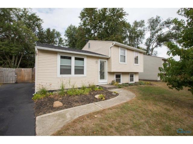 6926 Westwyck, Whitehouse, OH 43571 (MLS #6016158) :: Key Realty