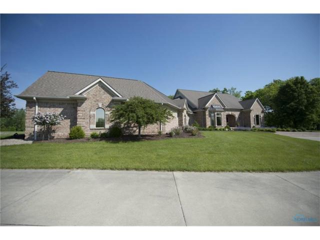9556 Casebeer Miller, Hicksville, OH 43526 (MLS #6016552) :: RE/MAX Masters