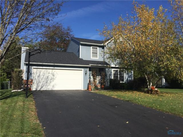 11154 Temperance, Whitehouse, OH 43571 (MLS #6016833) :: RE/MAX Masters