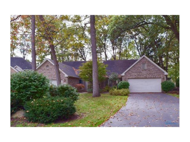 8605 Ponte Vedra, Holland, OH 43528 (MLS #6017148) :: RE/MAX Masters