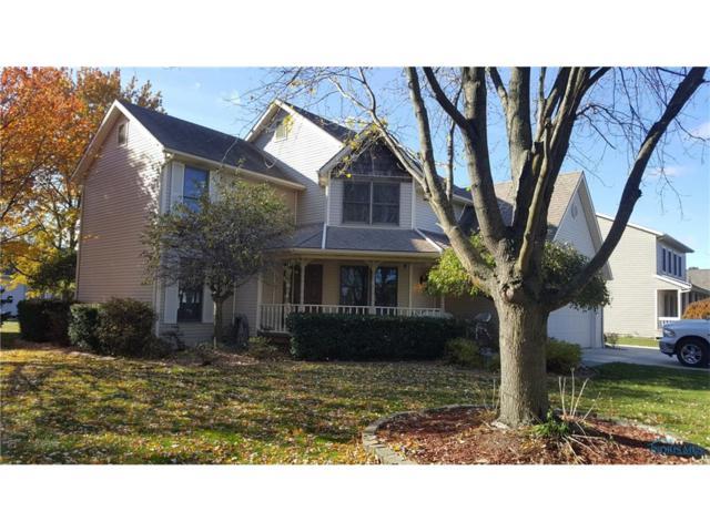 25 Meadow Lane, Delta, OH 43515 (MLS #6017448) :: Key Realty