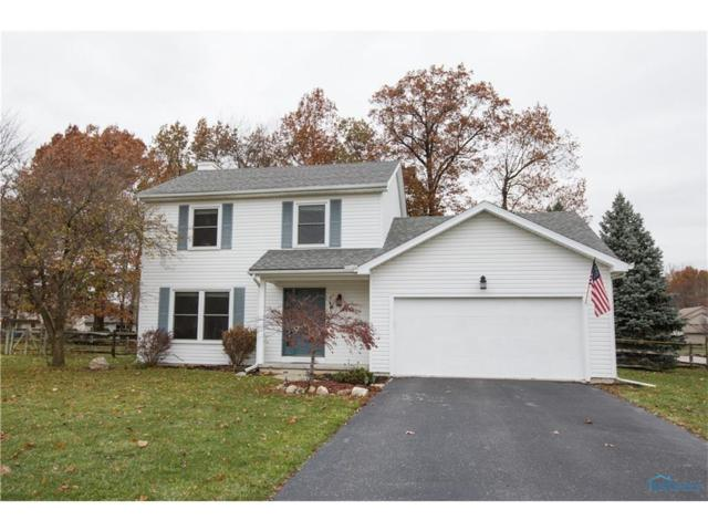 7028 Sandy Hill, Holland, OH 43528 (MLS #6017688) :: RE/MAX Masters