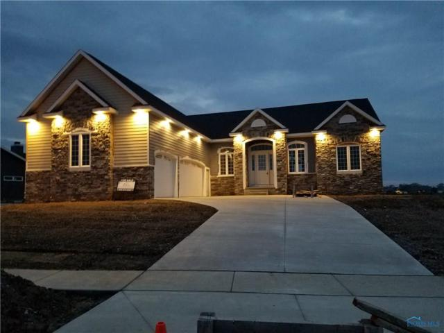 25261 John F Mccarthy, Perrysburg, OH 43551 (MLS #6018433) :: Key Realty