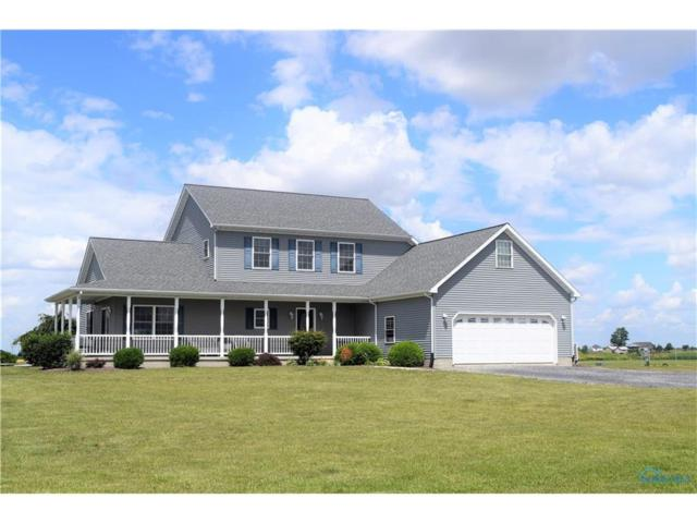 2445 County Road 13, Wauseon, OH 43567 (MLS #6018534) :: Key Realty