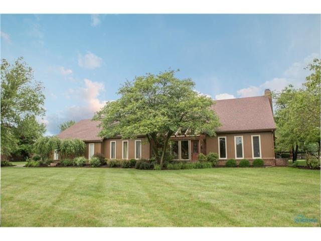 25673 Willowbend, Perrysburg, OH 43551 (MLS #6019028) :: RE/MAX Masters