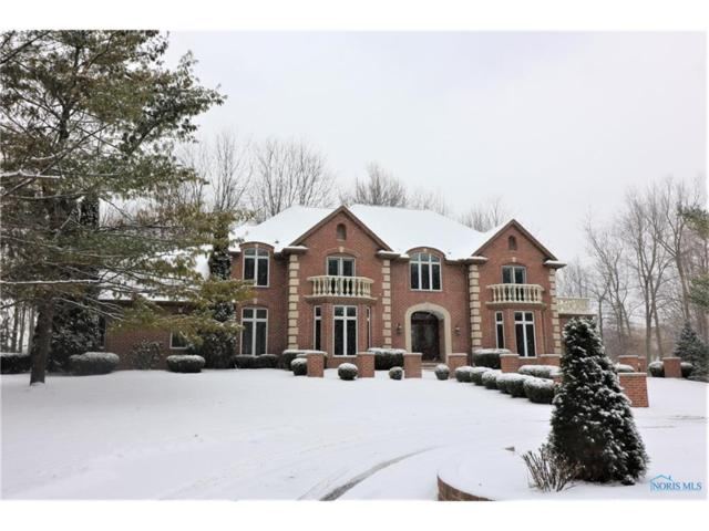 24 Tremore, Holland, OH 43528 (MLS #6019185) :: RE/MAX Masters