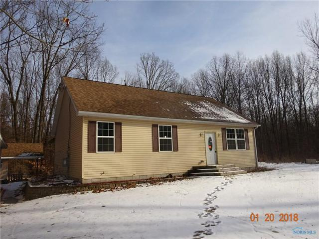 653 S Eber, Swanton, OH 43558 (MLS #6019300) :: RE/MAX Masters