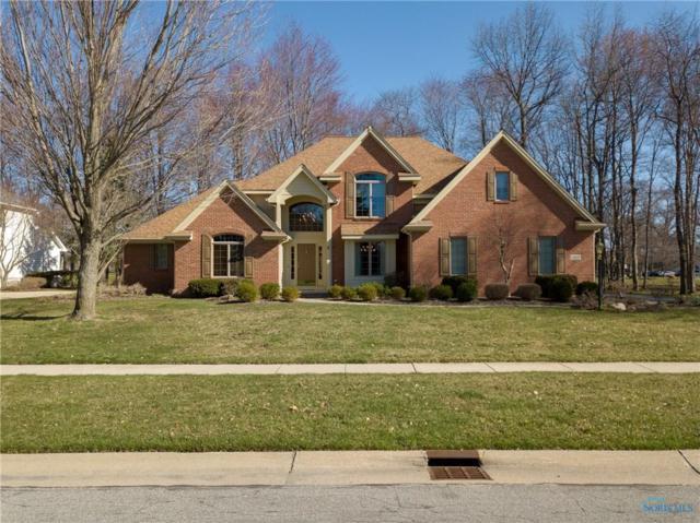 8954 Sand Ridge, Holland, OH 43528 (MLS #6023544) :: Office of Ivan Smith