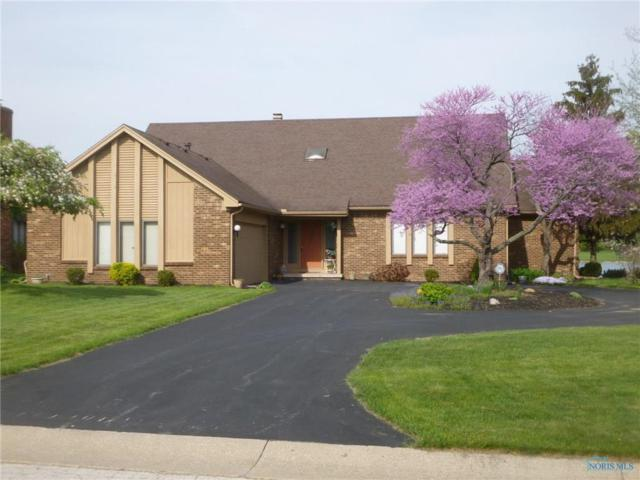29431 Belmont Lake, Perrysburg, OH 43551 (MLS #6024852) :: Key Realty