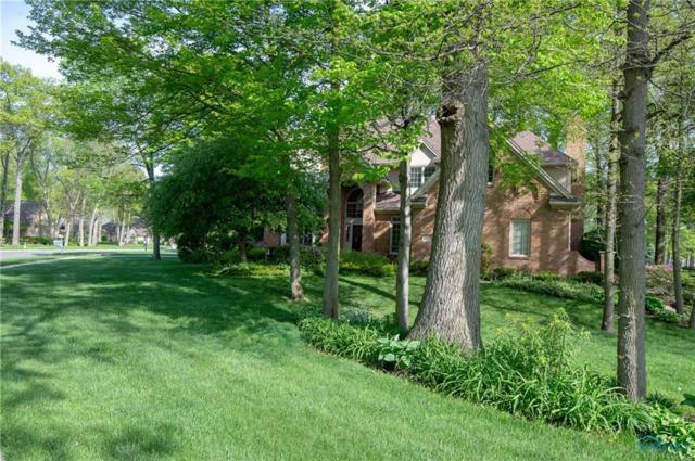 8658 Oak Valley, Holland, OH 43528 (MLS #6025060) :: Office of Ivan Smith