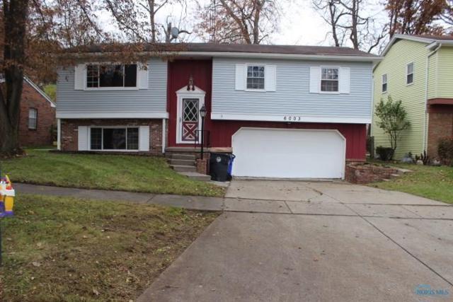 6003 Tetherwood, Toledo, OH 43613 (MLS #6025363) :: Key Realty