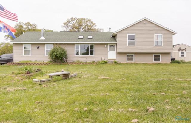 8771 County Road 11, Delta, OH 43515 (MLS #6025495) :: Key Realty