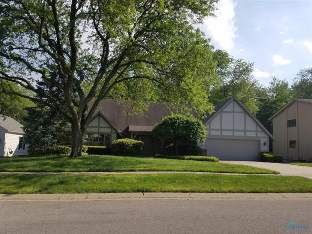 6133 W Wyandotte, Maumee, OH 43537 (MLS #6025792) :: RE/MAX Masters