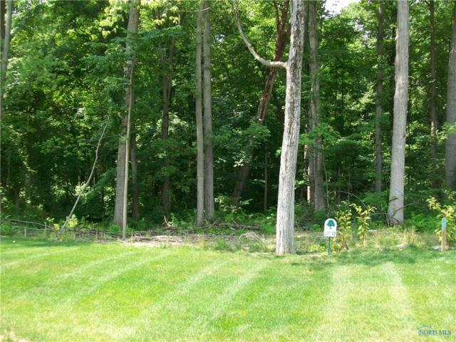 11112 Preserve Boulevard, Whitehouse, OH 43571 (MLS #6027346) :: RE/MAX Masters