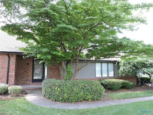 6734 Pine Creek, Toledo, OH 43617 (MLS #6027589) :: RE/MAX Masters