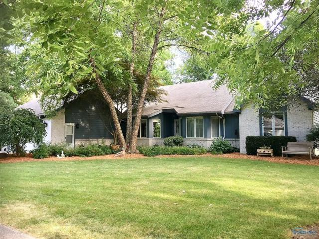 7801 County Road 3, Swanton, OH 43558 (MLS #6027613) :: RE/MAX Masters