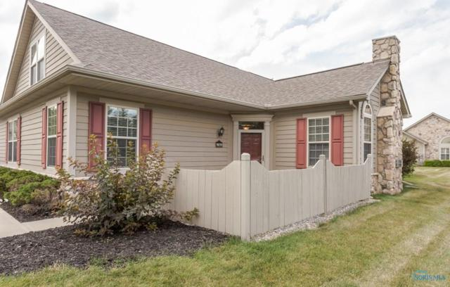 9859 Connor Lake, Perrysburg, OH 43551 (MLS #6027902) :: RE/MAX Masters
