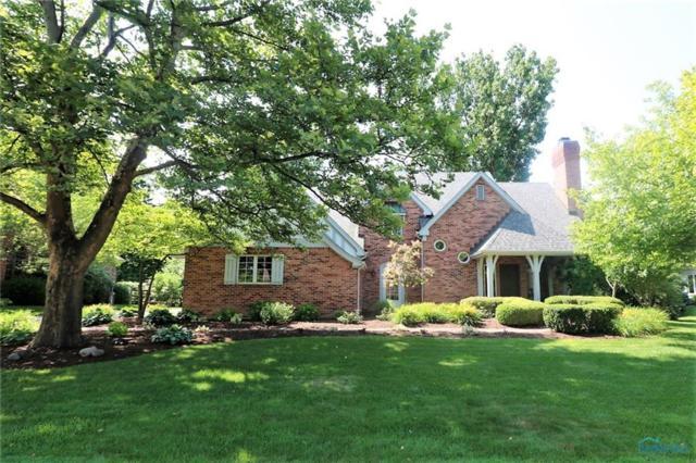 7431 Oak Hill, Sylvania, OH 43560 (MLS #6028073) :: RE/MAX Masters