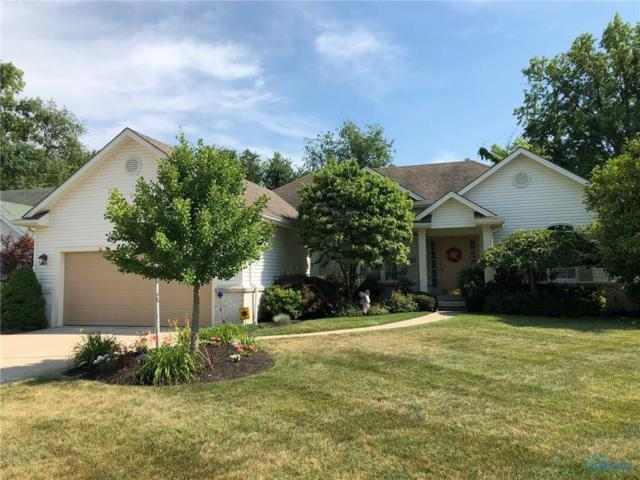 8379 Water Park, Holland, OH 43528 (MLS #6028074) :: RE/MAX Masters