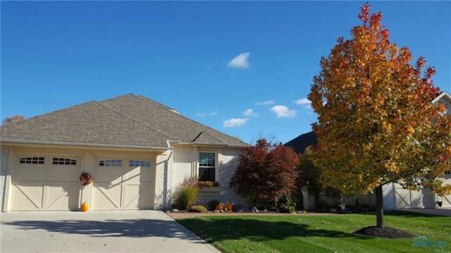 6713 Blue Creek, Whitehouse, OH 43571 (MLS #6028235) :: Key Realty