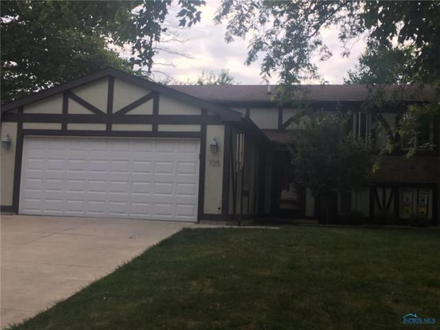 725 Meadow Springs, Maumee, OH 43537 (MLS #6028401) :: Key Realty