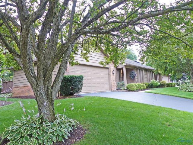 7061 Pickett D, Sylvania, OH 43560 (MLS #6028457) :: RE/MAX Masters