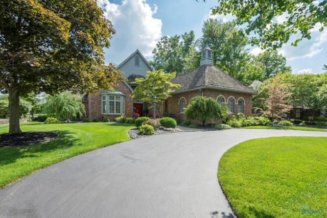 8735 Orchard Lake, Holland, OH 43528 (MLS #6029039) :: Office of Ivan Smith