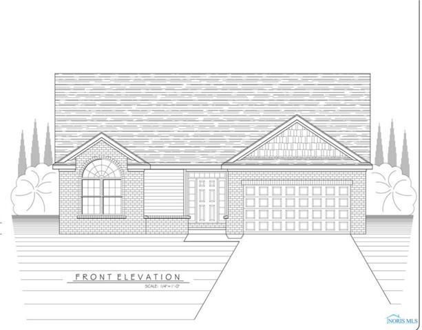 10301 Blue Ridge, Whitehouse, OH 43571 (MLS #6029311) :: Office of Ivan Smith