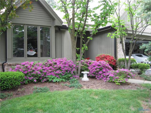 2745 Pine Knoll #2745, Toledo, OH 43617 (MLS #6029621) :: Office of Ivan Smith