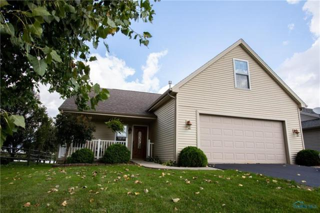 7022 Twin Lakes, Perrysburg, OH 43551 (MLS #6030249) :: Key Realty