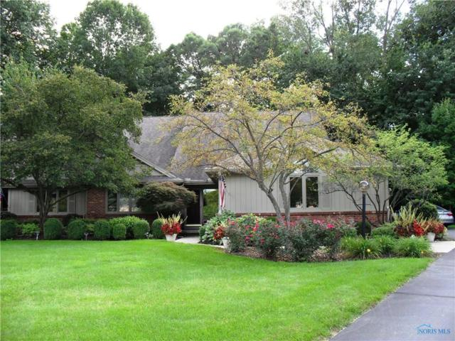 64 Wolf Ridge, Holland, OH 43528 (MLS #6030910) :: Key Realty