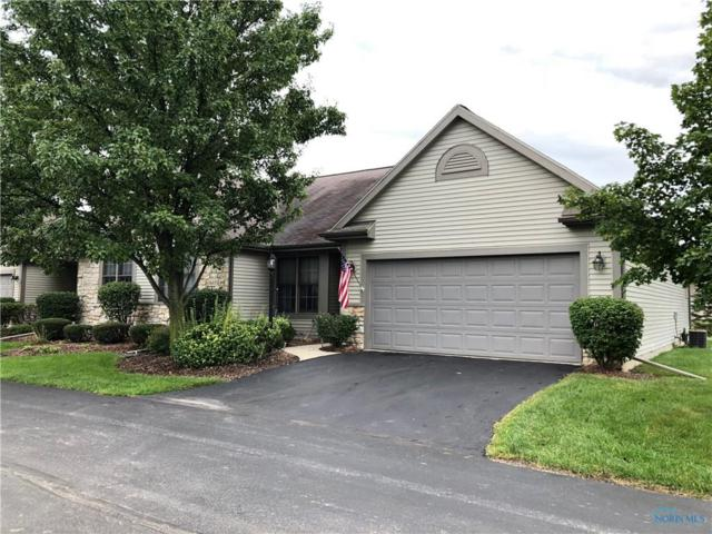 14633 Dexter Falls, Perrysburg, OH 43551 (MLS #6030997) :: Office of Ivan Smith