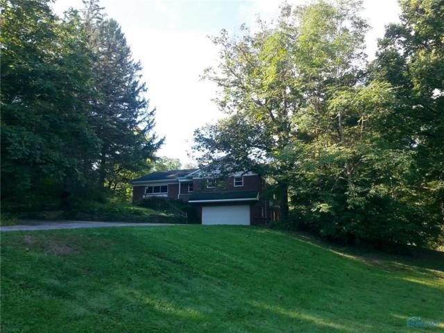 16560 Ovitt, Bowling Green, OH 43402 (MLS #6031154) :: Office of Ivan Smith
