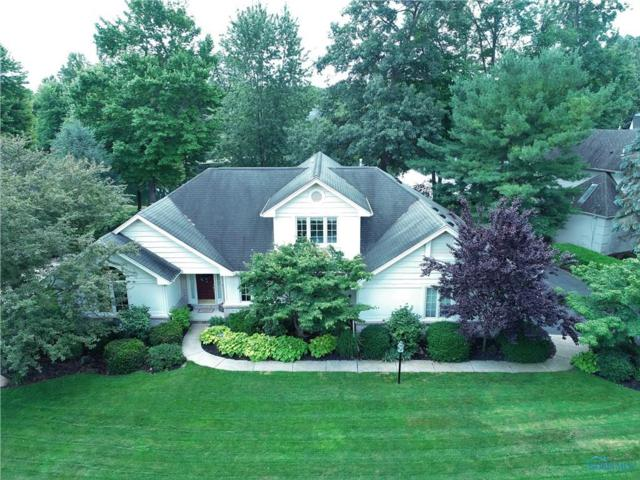 9029 Sand Ridge, Holland, OH 43528 (MLS #6033276) :: RE/MAX Masters
