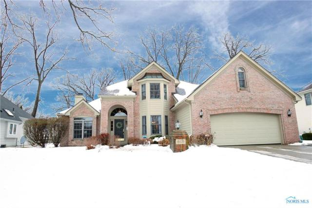 8420 Willow Glen, Holland, OH 43528 (MLS #6035196) :: RE/MAX Masters
