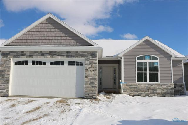 7005 Big Buck Trail, Whitehouse, OH 43571 (MLS #6035594) :: Key Realty