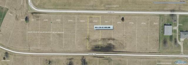 442 Pontiac, Montpelier, OH 43543 (MLS #6035781) :: Key Realty