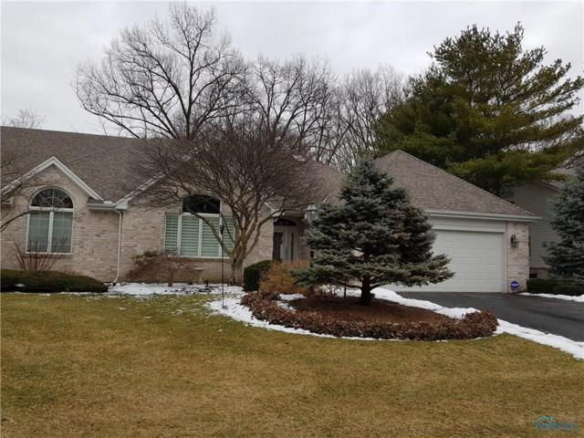 2828 Page Lindsay, Toledo, OH 43615 (MLS #6035854) :: RE/MAX Masters