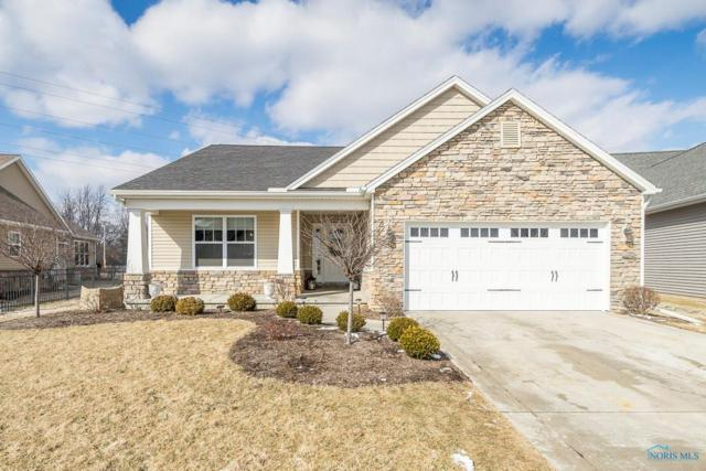 9850 Studer, Whitehouse, OH 43571 (MLS #6036715) :: RE/MAX Masters