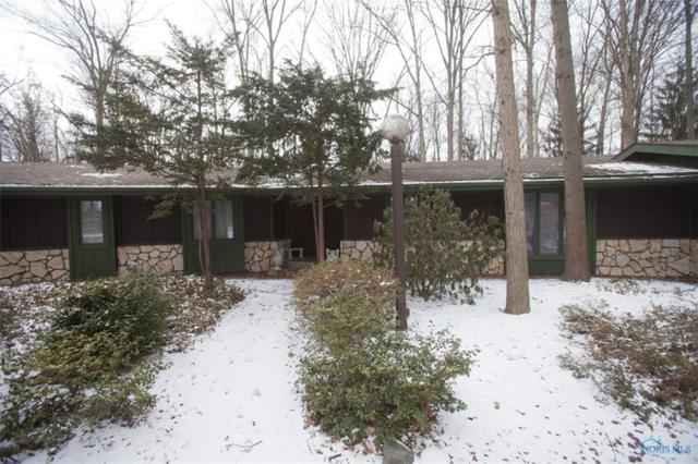 25 Indian Creek, Rudolph, OH 43462 (MLS #6036925) :: Key Realty