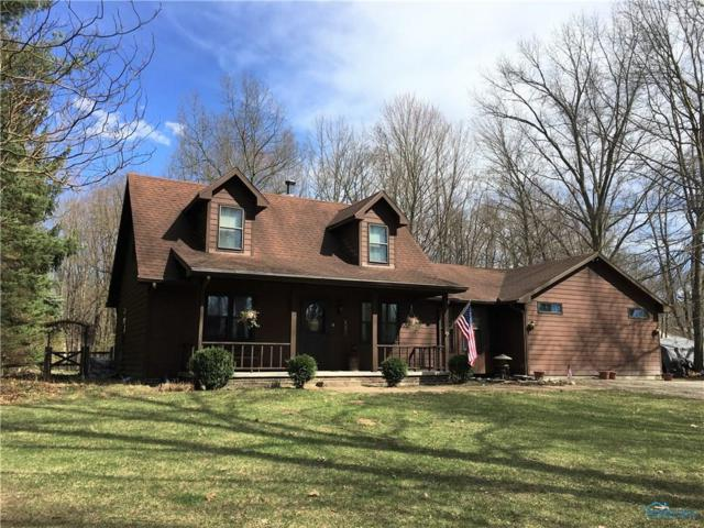 6010 County Road 2, Swanton, OH 43558 (MLS #6038138) :: RE/MAX Masters