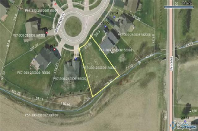 29710 Brookview, Perrysburg, OH 43551 (MLS #6039762) :: Key Realty